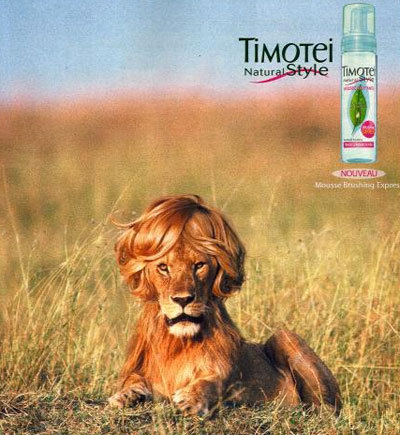 http://www.korova.ru/humor/pics/part2/93956432379923734.jpg