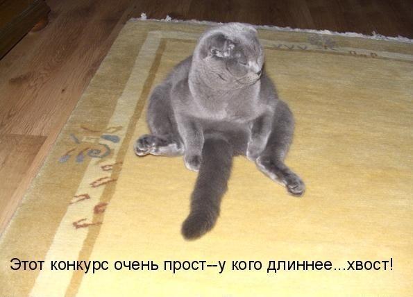 set-eroticheskogo-obsheniya
