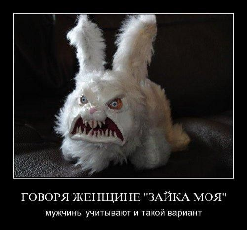 http://www.korova.ru/humor/pics/part6/130479353663152082.jpg