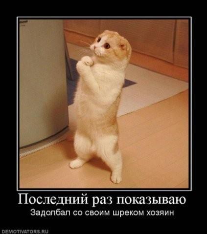 http://www.korova.ru/humor/pics/part6/199847928323022302.jpg