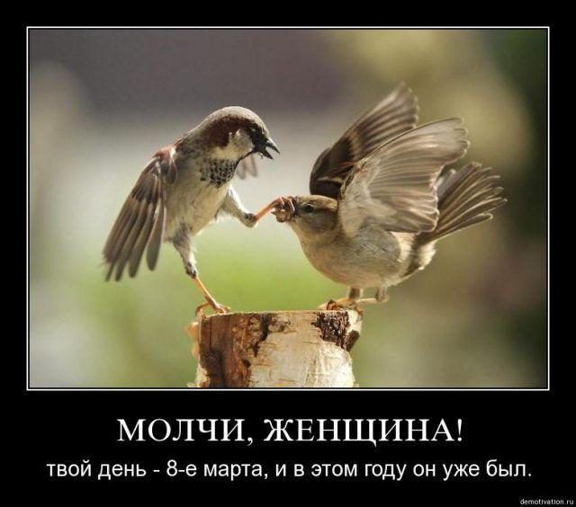 http://www.korova.ru/humor/pics/part6/424841728407686779.jpg